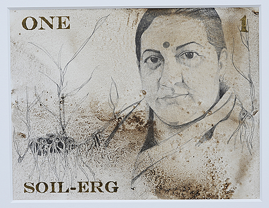 "Claire Pentecost, ""soil erg"" (detail), 2012. Ottoneum, dOCUMENTA XIII, Kassel, Germany. Photo courtesy of the artist."
